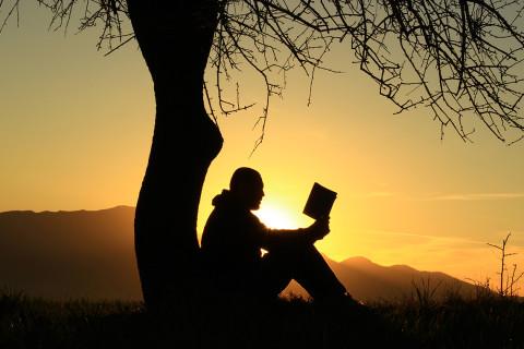 kitap okuyan adam silüeti