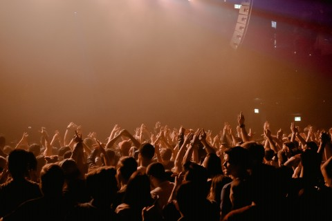 Approval junkies, by Lisa Larter, crowd at a concert