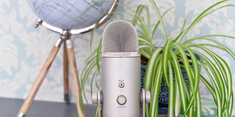 Close up image of a globe, a podcast mic, and a houseplant sitting on a desk